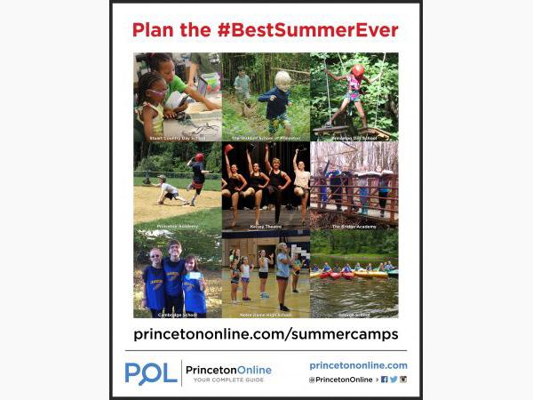 Princeton Online Poster